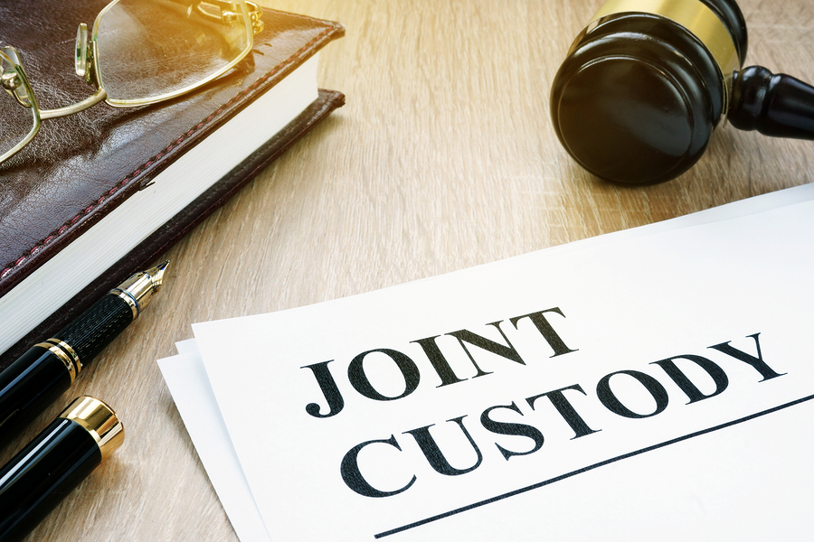 Illinois joint custody