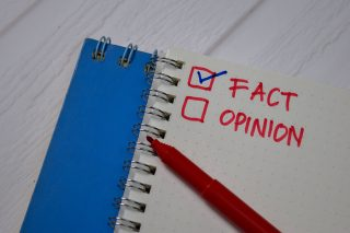 Opinion Witnesses In An Illinois Divorce