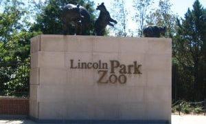 Lincoln Park Zoo visitation